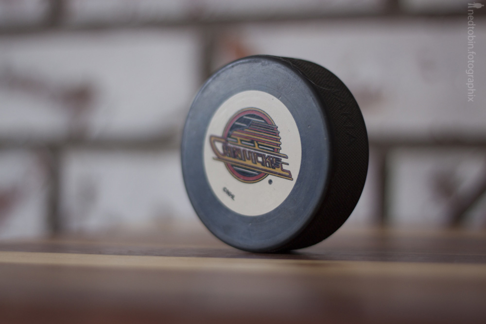 Hockey Pucks - 20130217 (8 of 32)