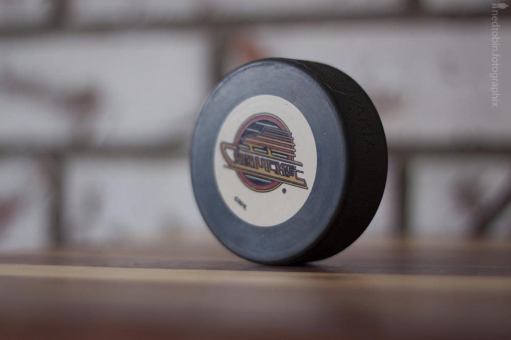 Hockey Pucks - 20130217 (8 of 32)