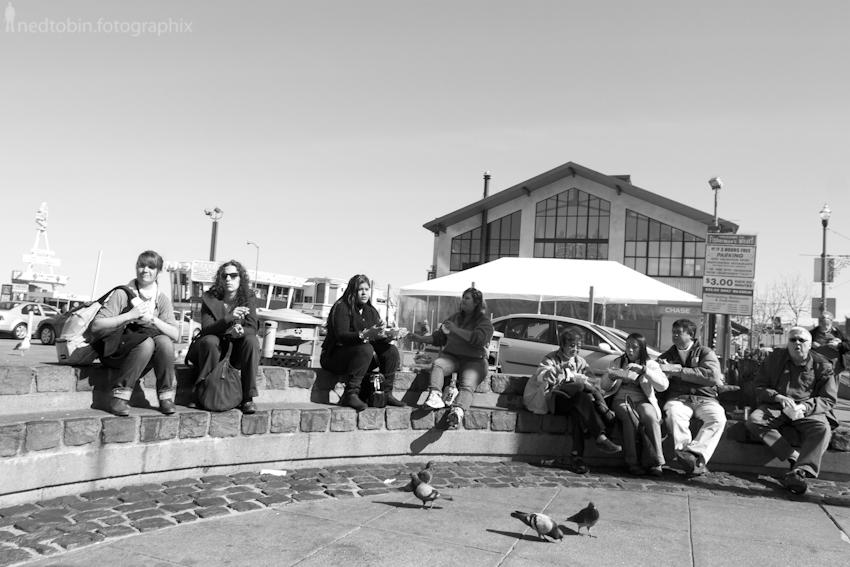 San Francisco - 201202 (383 of 809)