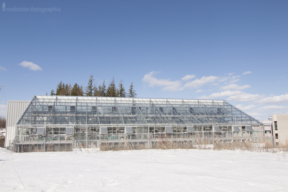 University of Northern British Columbia architecture I.K. Barber Enhanced Forestry Lab