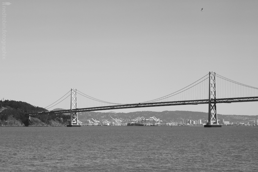 San Francisco - 201202 (454 of 809)