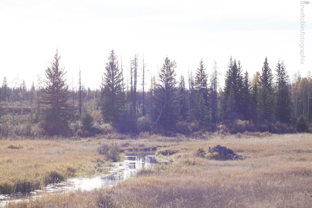 2013.10.03 - Green Lake (111 of 119)