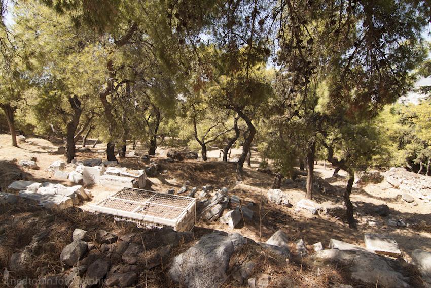 Grove   Acropolis, Athens, Greece