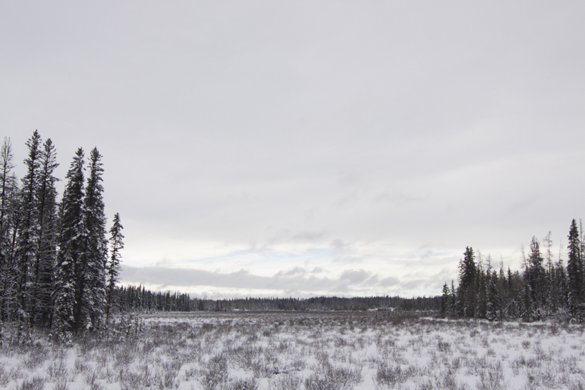 Cariboo, British Columbia, Canada