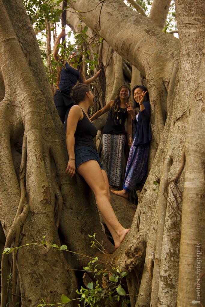 Yoga University - Maui Hawaii - Teacher Training - Ned Tobin