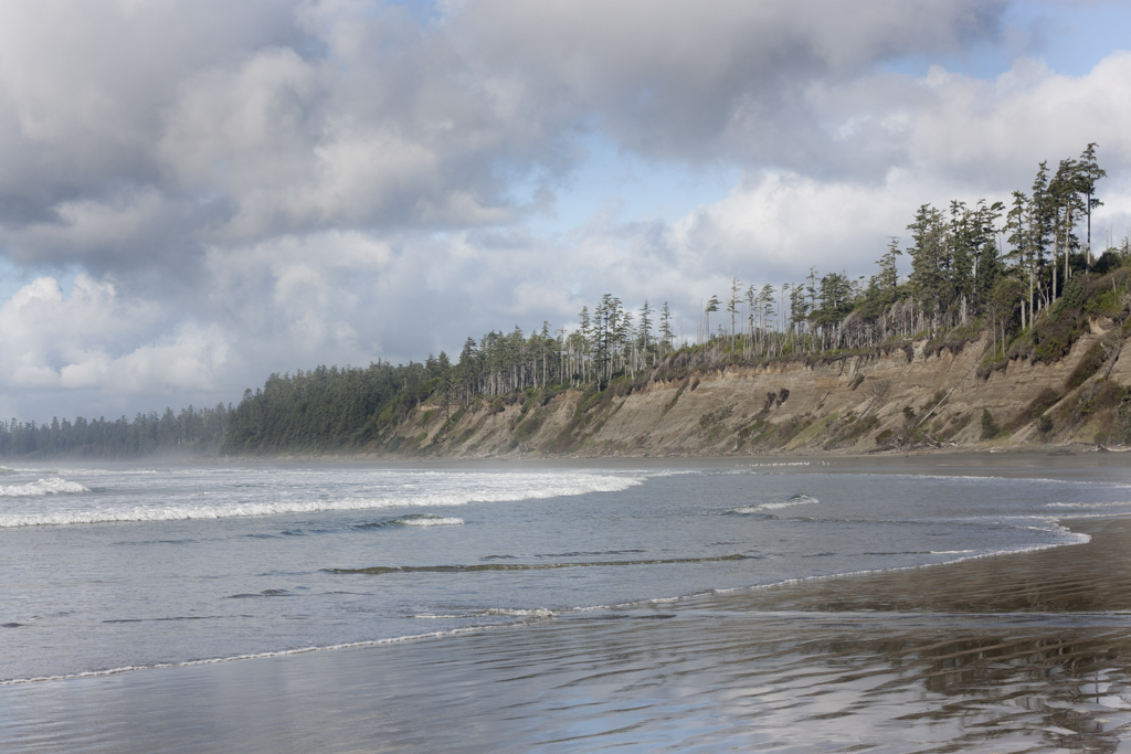Ned Tobin - West Coast Tofino Ucluelet - PNW