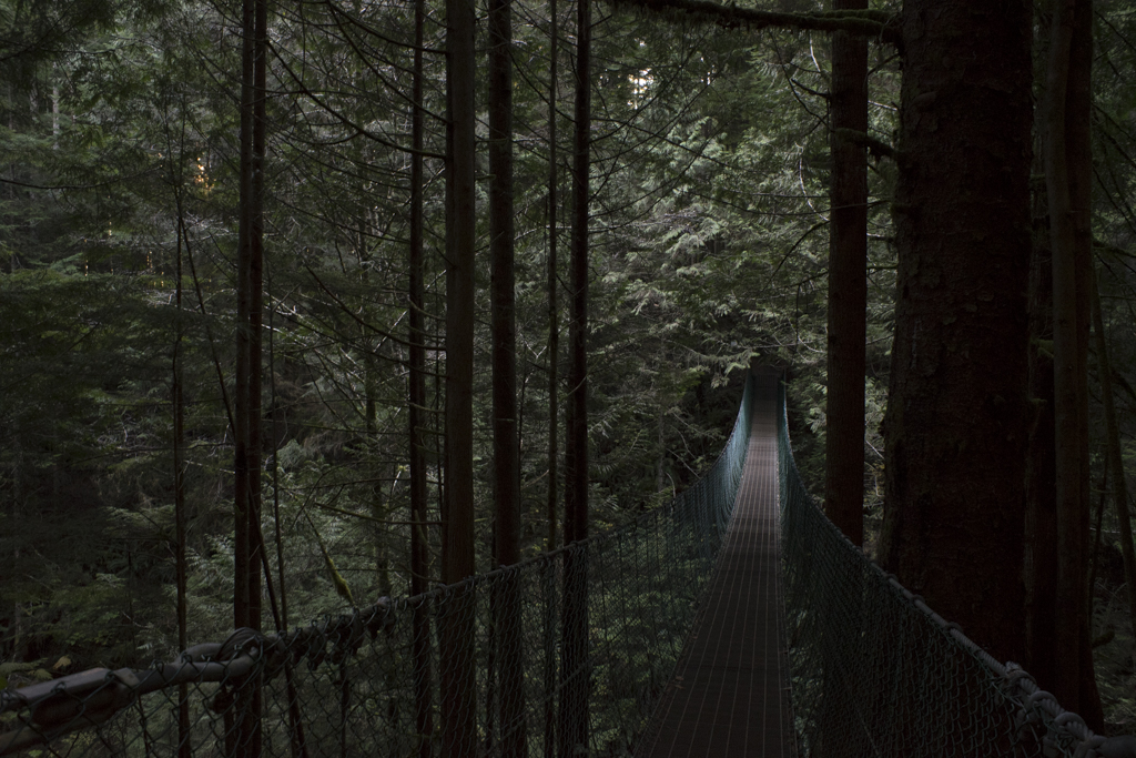 Bridge on the Juan de Fuca trail system on the West Coast of Vancouver Island