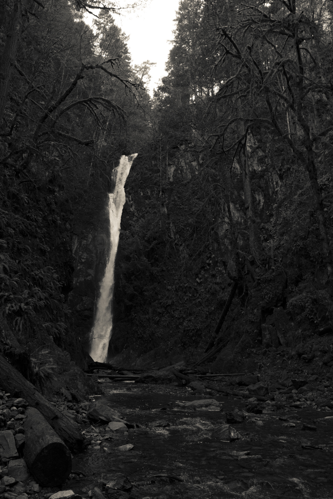 waterfall in Goldstream Provincial Park, Vancouver Island