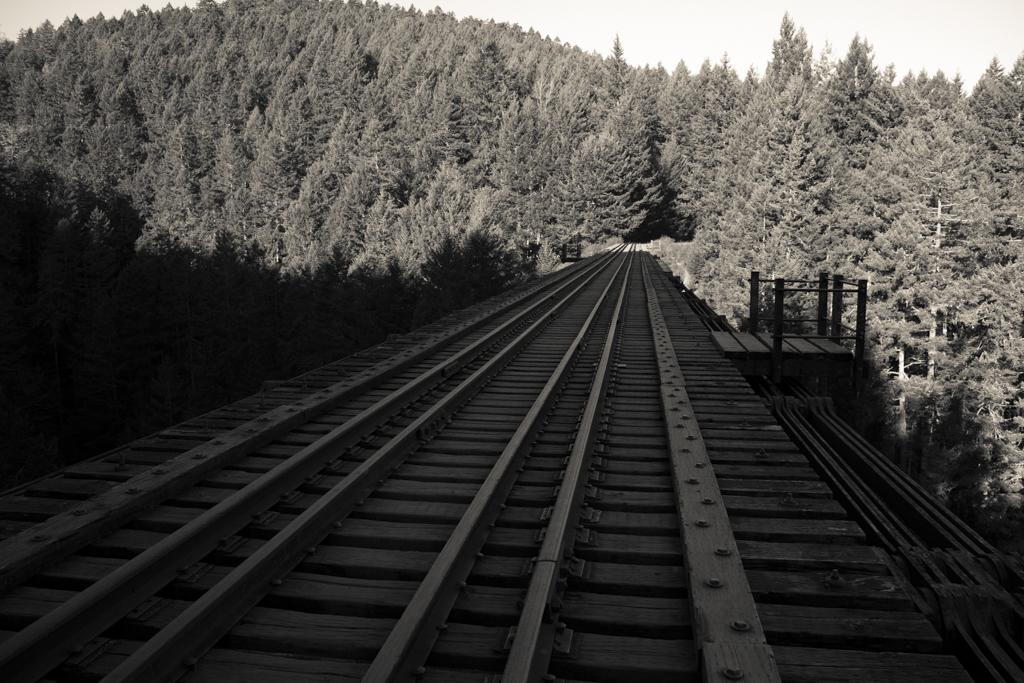 trestle bridge on Vancouver Island