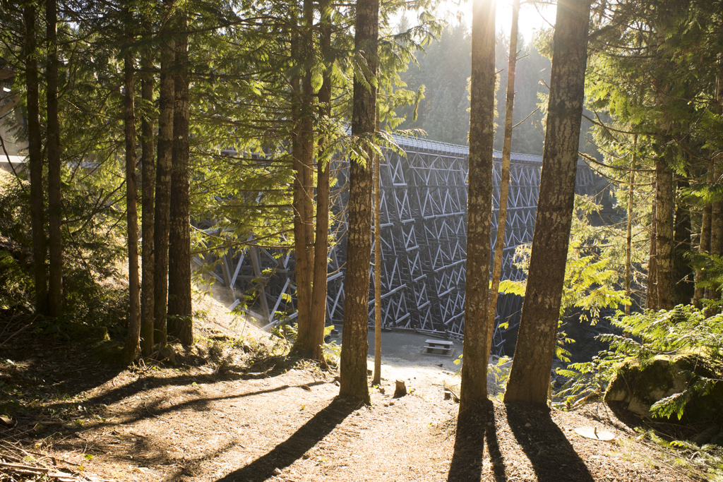 Kinsol trestle bridge on Vancouver Island